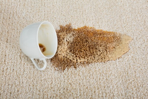 Carpet Cleaning Leyland