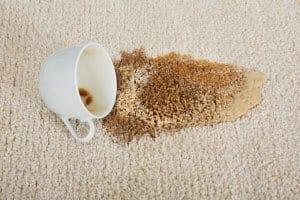 Carpet Cleaning FAQ's