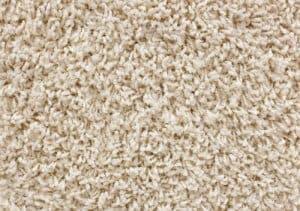 commercial carpet cleaning Blackburn