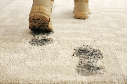 Best Carpet Cleaner Preston – Are Dirty Carpets Having An Effect On Your health?